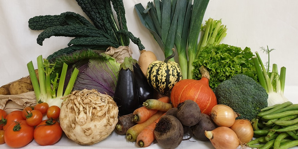 A delicious range of organic vegetables that often feature in our Veg Bags.